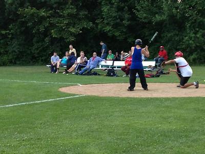 2014 Softball Regional