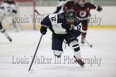 Hockey Pingree at Abbey on 1/30/19