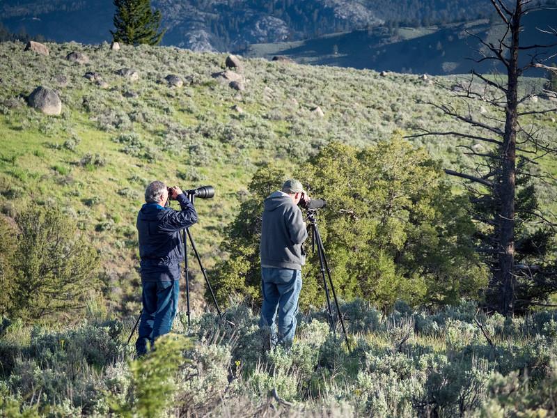 180603-Yellowstone2-6032139.JPG