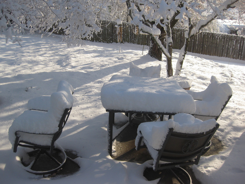 Snow in Jackson_20090301_010.JPG