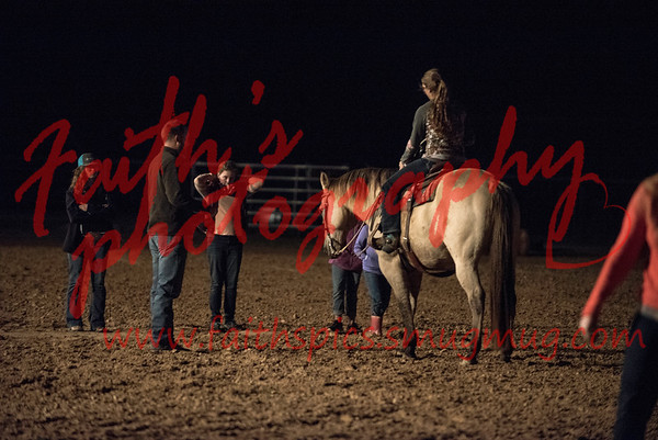 Horse Judging practice 112017