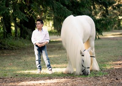 Linh Luong - Unicorn