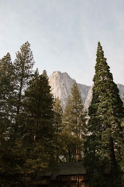 Forest_City_Photographs_Honeymoon_Califonia_San_francisco_Yosimite-162.jpg