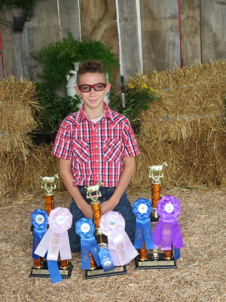 08-22-17 NEWS defiance fair winners