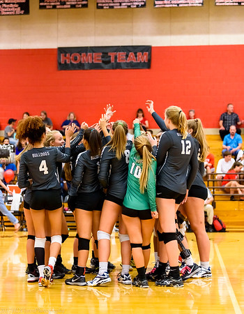 Bowie Volleyball 2017