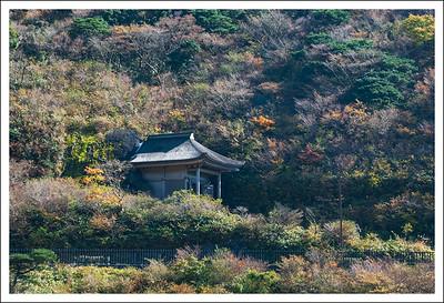 Three seasons at Shojin Ike