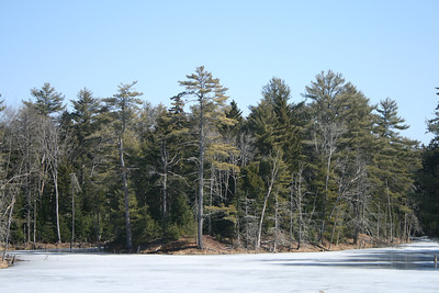 Maine - Wolfe's Neck Woods