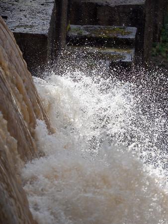 15 Feb 2019 Searsville Dam