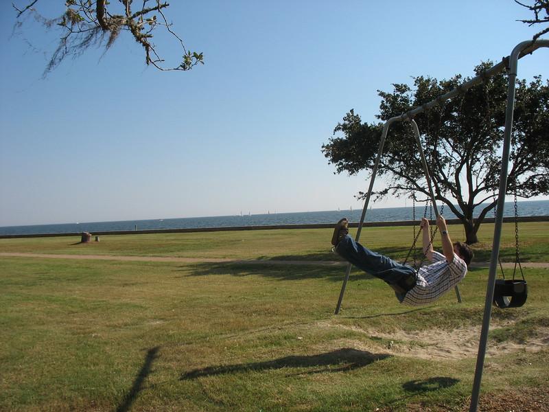 Dan swings