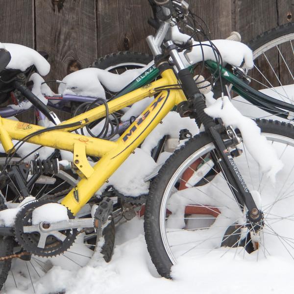 tell bikes.jpg