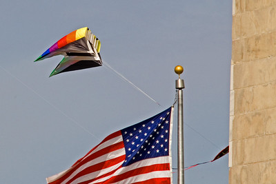 Kites! The Washington DC Kite Festival