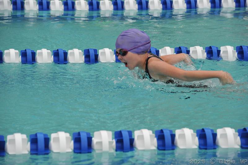 2015-06-17_HAC_SwimMeet_v_Nottingham@HAC_HockessinDE_081.jpg