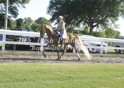 CLASS 5  AMATEUR TRAIL PLEASURE 4 & UNDER