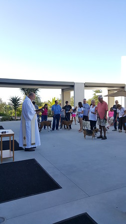 2017-1001 Blessing of Animals