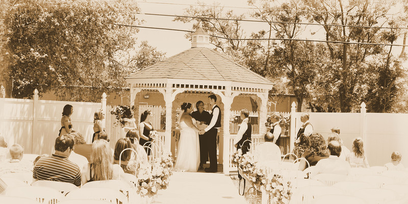 8X16 Sepia Wedding Party.jpg