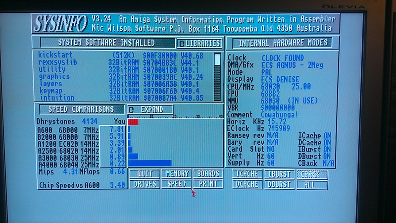 Amiga 3000_SysInfo.jpg