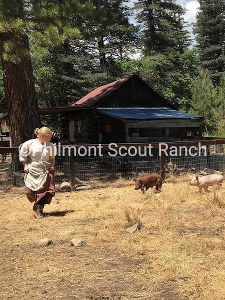 3rdHumor_2019_Humor_KarenJohnston-Ashton_running with the pig_Rich cabins_467.jpg
