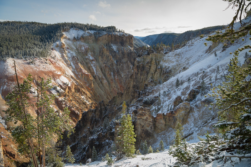 Snowy Canyon || The Grand Canyon of the Yellowstone