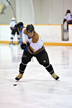 Hockey Experiments VIII