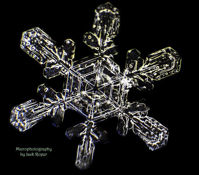 Snow Flake ...invert .jpg