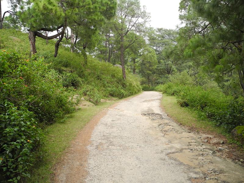 india2011 318.jpg