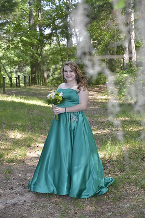 2017 Prom Photos:  Shirah