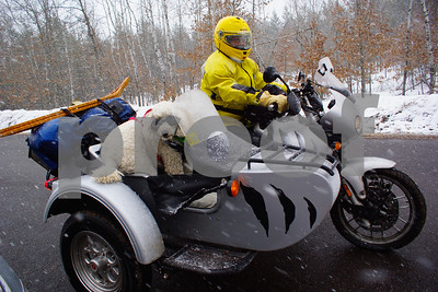 documentary-film-dogs-ride-in-bikers-sidecars