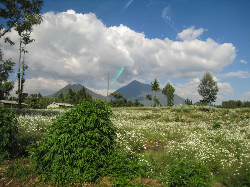 Rwanda_17_ixus-8896.jpg
