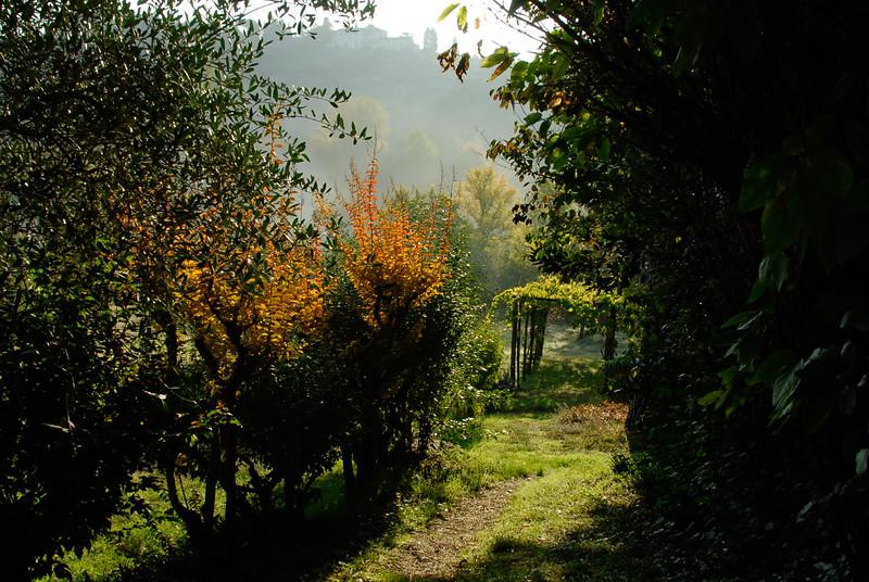 2009JWR-Italy-236.jpg