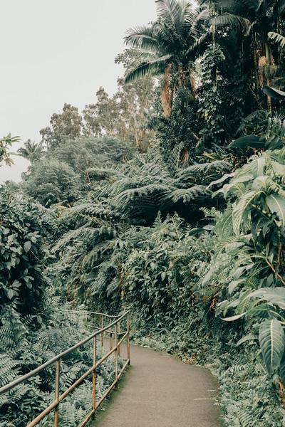 Hawaii20-384.jpg