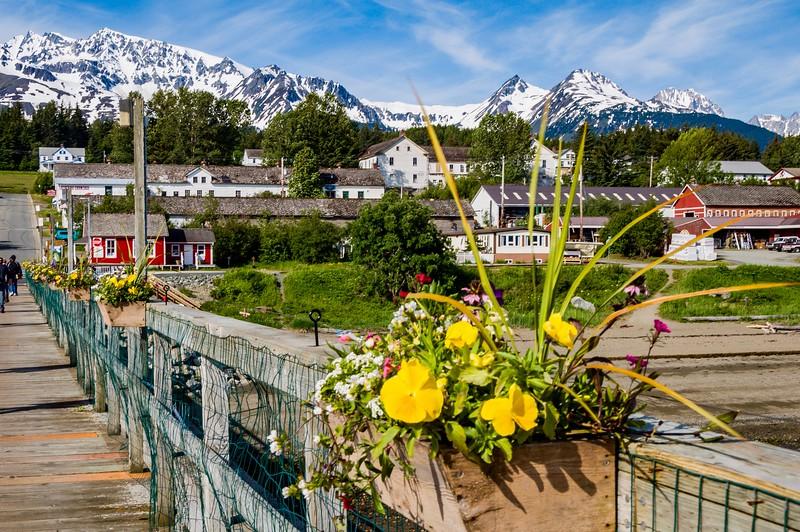 AlaskaCruise2012_20120621_0695.jpg
