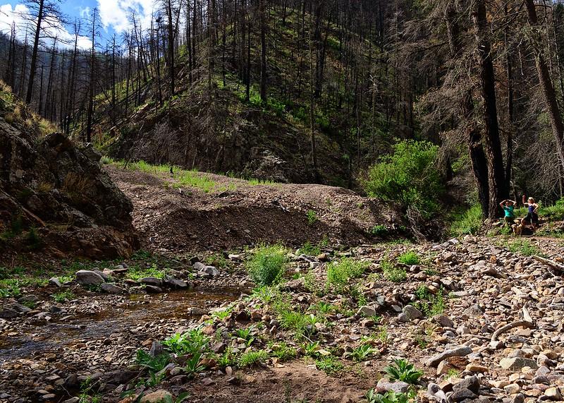 NEA_0392-7x5-Southfork Trail.jpg