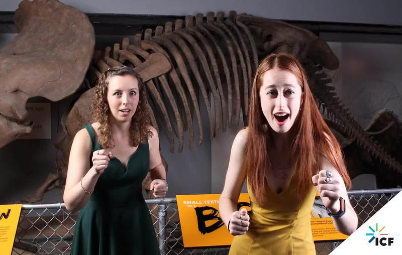 ICF-2018-holiday-party-smithsonian-museum-washington-dc-3D-booth-268.mp4