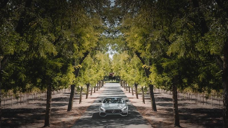 car to vineyards-Edit.jpg