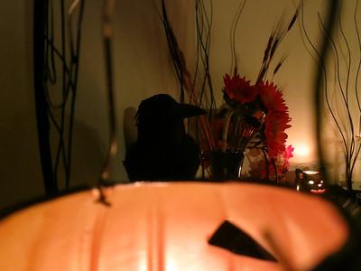 Halloween House Decorations 2013