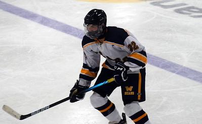 HS Sports - Grosse Ile Wyandotte Roosevelt Hockey 21