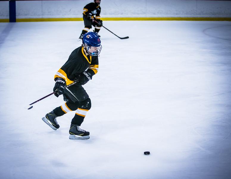 Bruins2-302.jpg