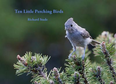 <em>10 Little Perching Birds</em>