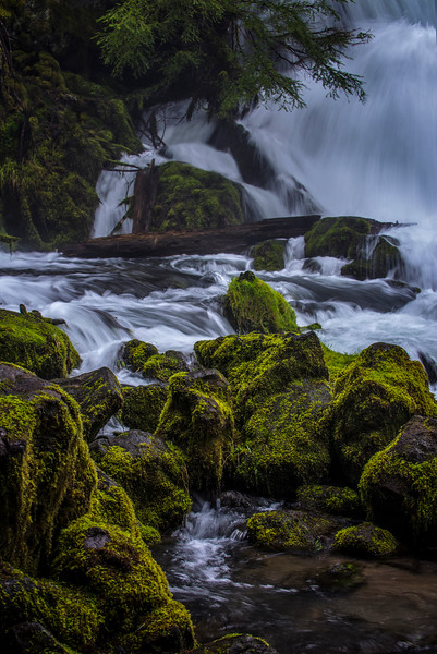 P20160326_Pearsoney Falls_Rogue-River_KateThomasKeown_DSC4374.jpg