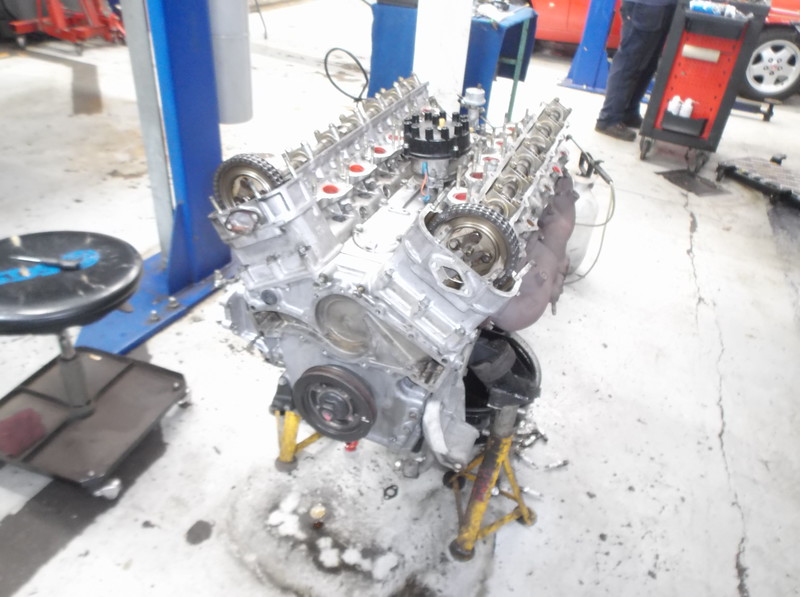 DSCF9339.JPG
