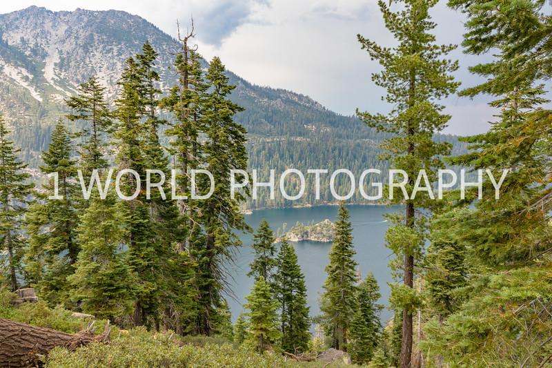 San Fran_Lake Tahoe Trip 2017-116-8.jpg