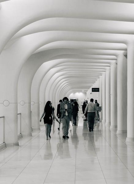 Occulus hallway 2.jpg