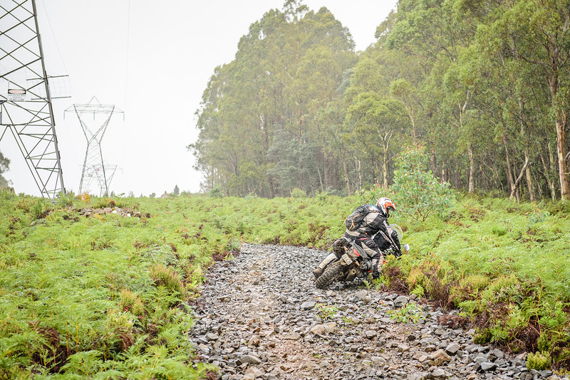 2019 KTM Australia Adventure Rallye (431).jpg
