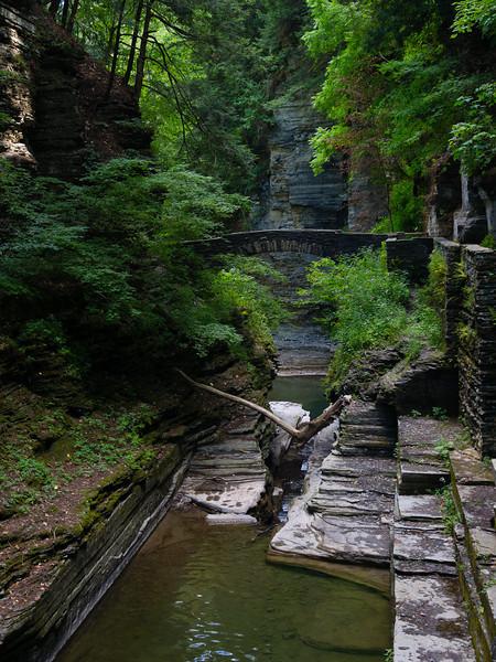 Ithaca's gorges