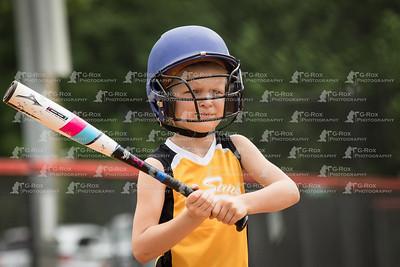 Sun's Softball
