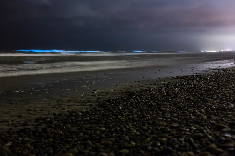 Red Tide At Night
