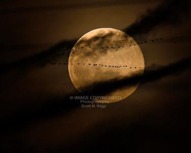 03/09/20 Moon