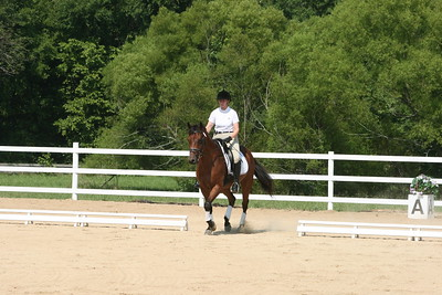 Bridle 10 Mischief And Arelene DeLong