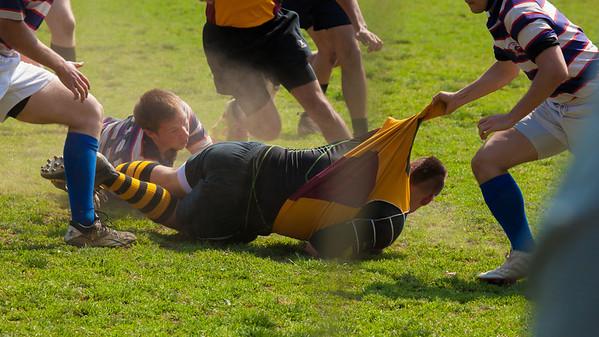 Rugby - American University vs Ursinus College