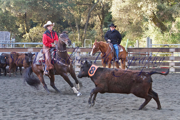 Woodside Ranch Horse Competition